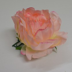 Light Pink Closed Peony Heads - Pack of 10
