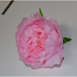 Pink Closed Peony Heads - Pack of 10
