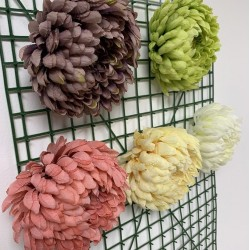 Big Chrysanthemum Flower Heads - Light Green