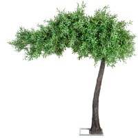 310cm Artificial Canopy Arch Style Olive Tree