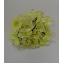 Baby Green Hydrangea Flower Heads - Pack of 10