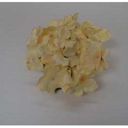 Cream Hydrangea Flower Heads - Pack of 10