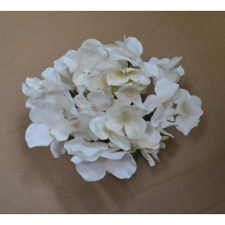 Ivory Hydrangea Flower Heads - Pack of 10