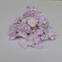 Hydrangea Flower Heads