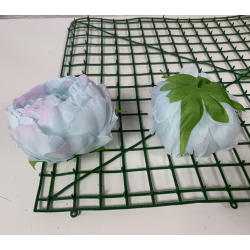 Baby Blue and Pink Peony Heads Closed - Pack of 10