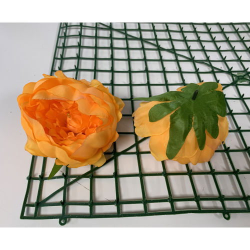 Bright Orange Peony Heads Closed - Pack of 10