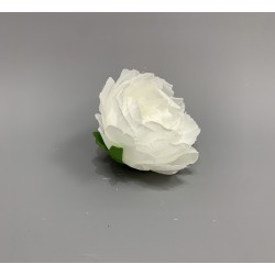 Closed Peony Heads - White - Pack of 10