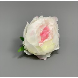 Closed Peony Heads- White and Pink - Pack of 10
