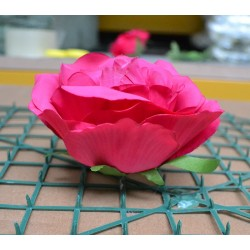 Fuchsia Rose Heads - Pack of 10
