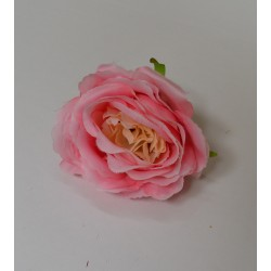 Pink and Peach Open Peony Heads - Pack of 10
