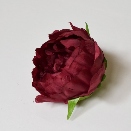Peony Flower Heads - Closed