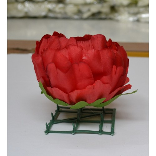 Red Peony Heads Closed - Pack of 10